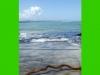 costaricabackpackers_beach15