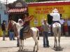 orosivalleycostarica_ppl_horses2