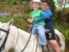spanishschoolcostarica_ttd_horses4